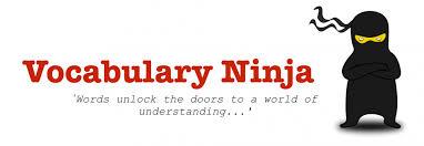 Vocabulary Ninja